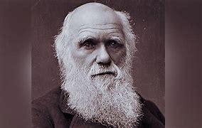 Un franc succès pour la soirée Darwin